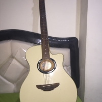 Gitar APX 500 II ORIGINAL