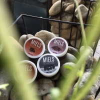 Miels face and body scrub (mocha love)