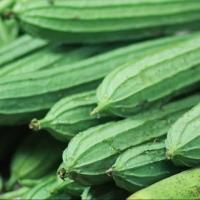 SayurHD sayur segar oyong 250gr