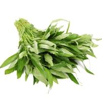Sayur Kangkung 500gr (happy harvest)