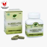 Jamu IBOE - 1 botol Sambiloto Herbal Supplement 30 kapsul