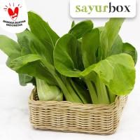 Pak Choy Value - 500 gr (Sayurbox)