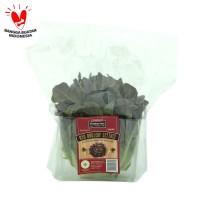 Sayur Salad Oakleaf Red Lettuce Fresharvest