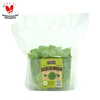 Sayur Salad Oakleaf Green Lettuce Fresharvest