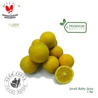 Jeruk Baby JAVA Premium 1kg / Sunkist Lokal / Buah Jeruk / Buah Segar