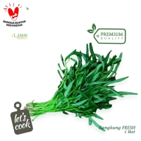 Sayur Kangkung SEGAR 1 Ikat / Kangkung / Daun Kangkung / Sayur Segar