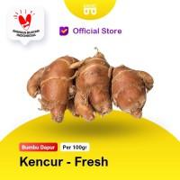 Kencur Fresh - Bakoel Sayur Online