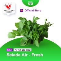 Selada Air - Official Store Bakoel Sayur Online