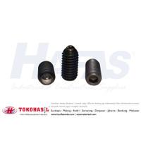 Hex Socket Spring Ball Plunger set screw M5x12, M5 x 12 - P0.80