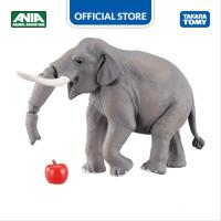 Ania AS-33 Indian Elephant