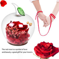 ♪SALE♪Long Forever Rose With Gift Box Apple Shape Glass Unique