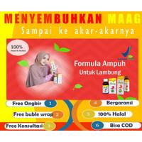 madu magastrol forte obat herbal radang infeksi luka asam lambung-G