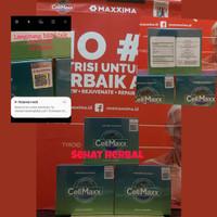 cell Maxx maxxima cellmax cell max original celmax