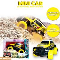 RC Mini Car - Mainan Mobil Radio Remote control - free batrai