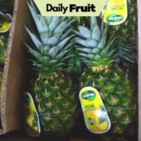 Buah Segar Nanas Honi Sunpride Pineapple Fresh 1 Pcs Promo