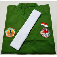 Baju silat seragam pakaian pencak silat Persinas Asad Hijau sz L