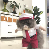 Kostum Baju kucing/anjing karakter anak SD