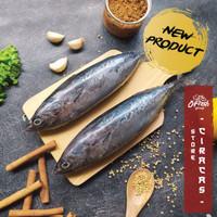 Ikan Tongkol / Deho Segar Beku / Ikan Segar Kiloan 3-5 pcs/kg