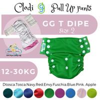 Outer only clodi GG T dipe gg pant jumbo size 2 tanpa insert