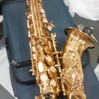 Baby Saxophone Walker