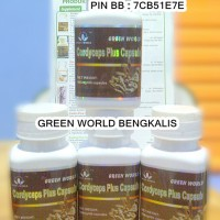 Green World Cordyceps PLUS CAPSULE