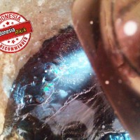 PAKET 1Kg Bahan / Rough PILIHAN Black Opal SEMPUR Akar Dahan Ranting