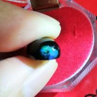 Batu Black Opal siap naik ring (keluar jarong)