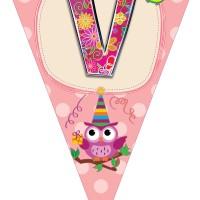 Personalized Bunting Flags Owl Theme Banner Ultah / Ulang Tahun Anak