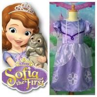 Baju Kostum Sofia The First Usia 8-12 Tahun