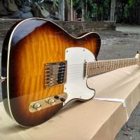 Elektrik Gitar Fender Richie Kotzen Telecaster Custom Gold