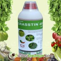 Pestisida Grasstin @1ltr Obat Herbisida Pembasmi Gulma Rumput Liar