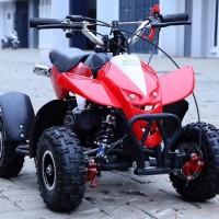ATV 50cc Mini Motor Anak 2 Tak X5 Australia Double Kinalpot