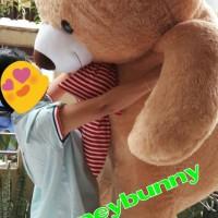 boneka teddy bear beruang super besar 2meter