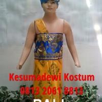 Bali Laki TK | Baju Adat Kostum Anak Karnaval Pentas Pakaian Daerah