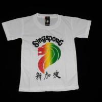kaos anak Singapura motif pelangi
