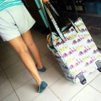 foldable shopping bag/tas lipat/tas trolly/tas belanja