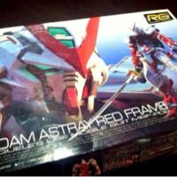 RG Gundam Astray Red Frame