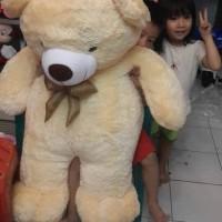 BONEKA TEDDY BEAR / COSY JUMBO 100CM