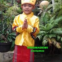Daerah Banjarmasin TK | Baju Adat Kostum Karnaval Pawai Anak Pria