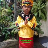 Daerah Banjarmasin TK | Baju Adat Kostum Karnaval Pawai Anak Wanita