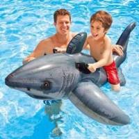 Ban Renang Bentuk Ikan HIU Shark Untuk teman anak saat renang/Dipantai