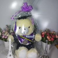 Boneka Wisuda Custom 40cm Packing Plastik Nama Selempang