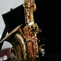 Cavaliers Chateau Baby Saxophone CCS22 VLGL Gold