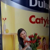 CAT DULUX CATYLAC INTERIOR MARIGOLD 44505T 25KG