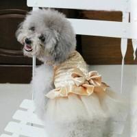 baju anjing kaos hewan kaus kucing kostum dog dress tutu cat satin