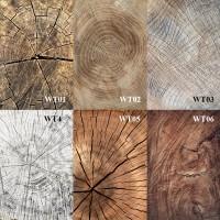 Alas foto | background foto | WOOD SLICE TEXTURE | 50cm x 100cm