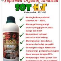 Jual Pupuk Organik Cair SOT HCS untuk Cabae/Lombok