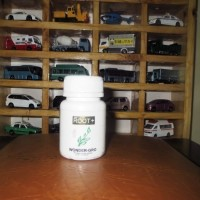 aquascape - wonder gro pupuk tancep 80 tablet