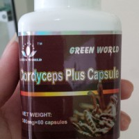 CORDYCEPS PLUS CAPSULE GREEN WORLD/ OBAT ASMA/OBAT TBC/ SESAK NAFAS