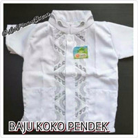 Baju Koko Anak Balita Lengan Pendek Bordir Putih (1- 7 tahun) Terlaris